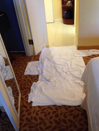 Washington Marriott Wardman Park: I checked in and found a puddle on the carpet of unknown origin. A rough start to my stay at the