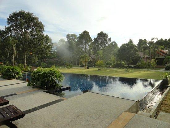 Orange Tree House : Pool