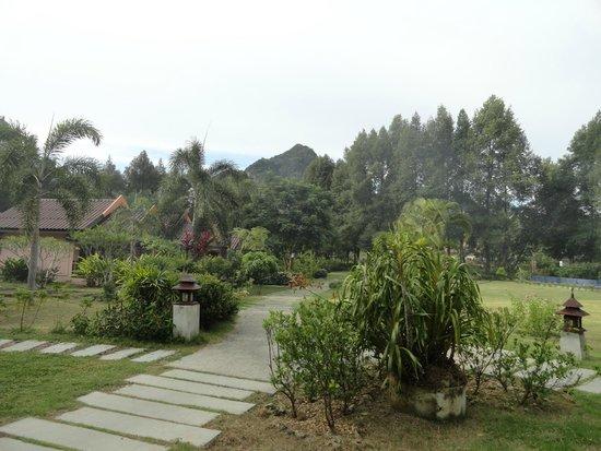 Orange Tree House : Garden