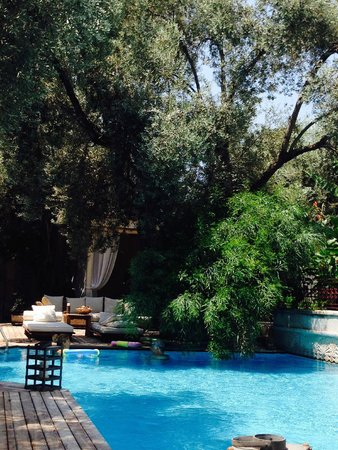 Jade Residence: Courtyard