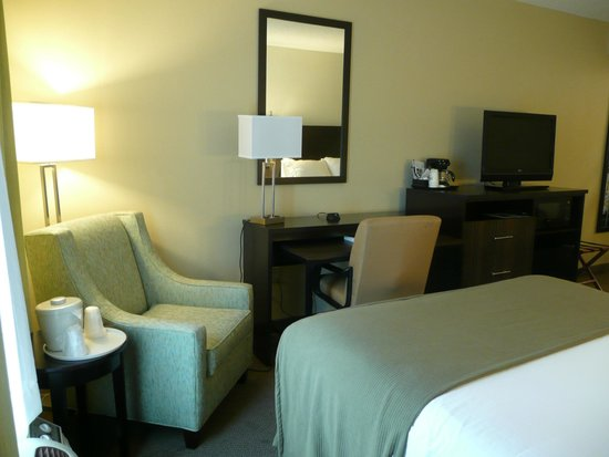Holiday Inn Express Hotel & Suites New Tampa I-75 Bruce B. Downs: Desk & upholstered chair