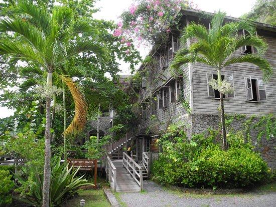 Jungle Bay, Dominica: Das Hauptgebäude