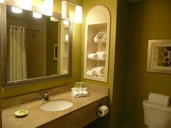 Holiday Inn Express Hotel & Suites New Tampa I-75 Bruce B. Downs: Three piece bath