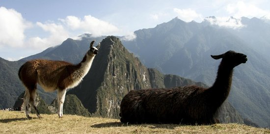 Machu Picchu: Está rodeada de montañas, un fuerte natural.