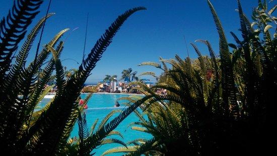 La Quinta Park Suites: The pool