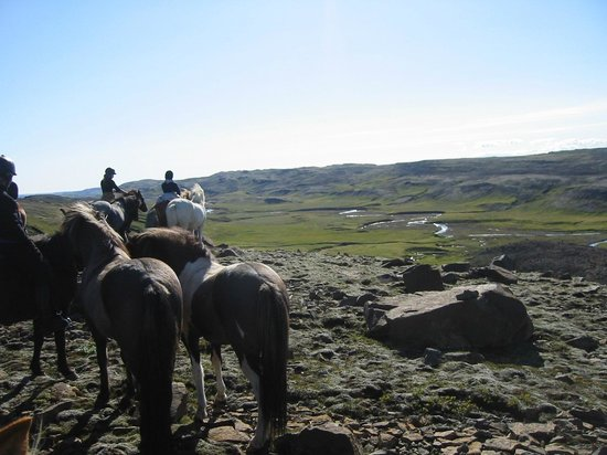 Riding Tours South Iceland : storslåede landskaber