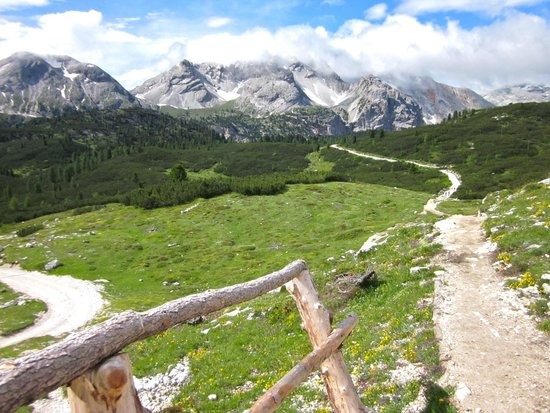 Dolomite Treks - Day Excursions: Pastures and mountains