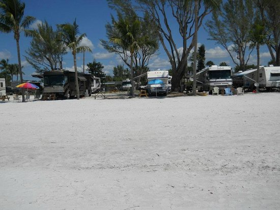 Red Coconut RV Park : View of the camp sites from the beach.