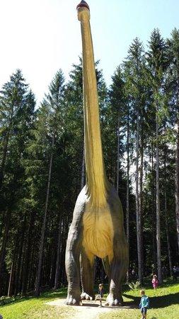 Dino-Zoo: DinoZoo