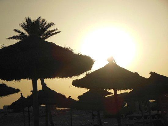 Djerba Plaza Hotel & Spa: Le bord de mer