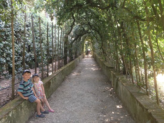 Boboli Gardens: some much needed shade on a hot day..