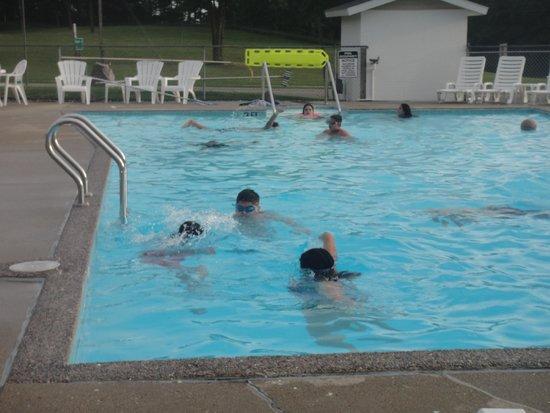 All Star Inn & Suites : nice size pool