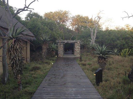 Kapama River Lodge: Couloir extérieur