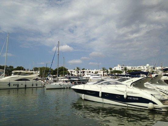 Apartamentos Cala d'Or Playa: Cala d'or Marina