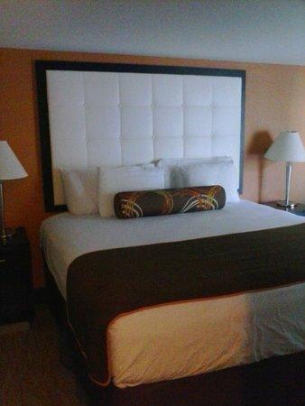 3 Palms Oceanfront Myrtle Beach : King Suite