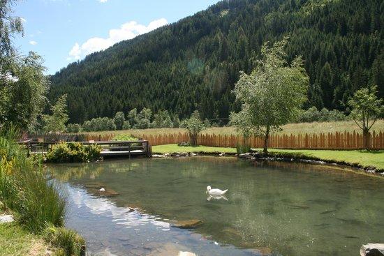 Alphotel Tyrol: Laghetto interno