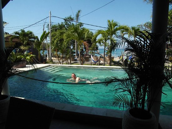 1000 Dream Bungalow - Lovina: Pool in der Anlage