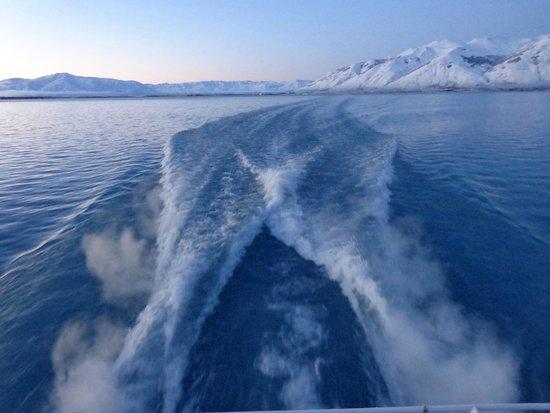 Lago Argentino: Estela del catamarán