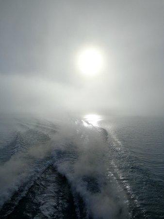 Lago Argentino: Bruma