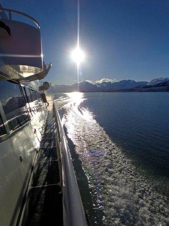 Lago Argentino: Atardecer