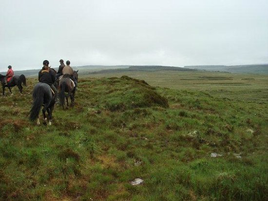 Slieve Aughty Riding Centre: Out on the wonderful wild moors, miles from anywhere, escaping 'life'