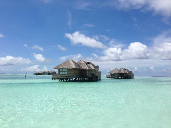 Gili Lankanfushi Maldives: view of other over water villas from the private reserve