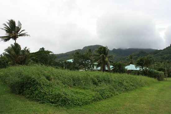 Aroa Kainga: View of Bungalow walking up road
