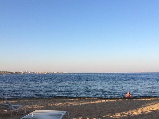 Sunrise Grand Select Arabian Beach Resort: The beach