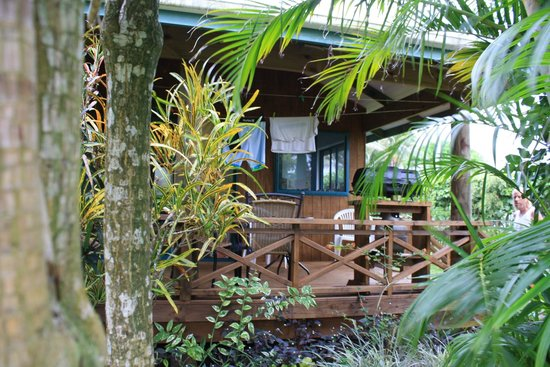 Aroa Kainga: Back Porch of bungalow