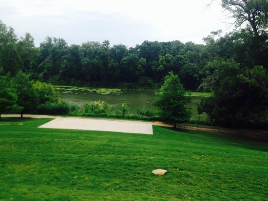 Hyatt Regency Lost Pines Resort and Spa : View to the lake area