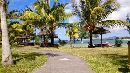 Jalsa Beach Hotel & Spa - Mauritius: vue de la piscine sur la plage