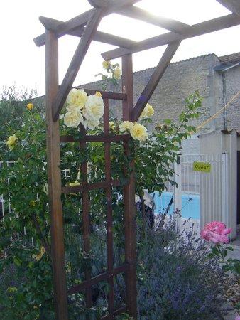 Hotel l'Oliveraie : good garden