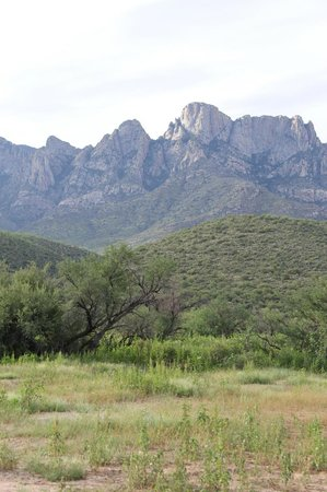 Catalina State Park : Catalina Mountains