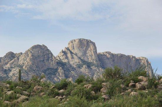 Catalina State Park: Catalina Mountains
