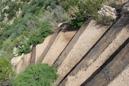 Stairs in Catalina State Park