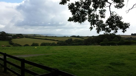 The Lost Gardens of Heligan : Stunning view