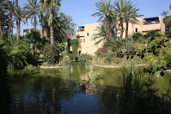 Club Med Marrakech le Riad : Vue sur les bassins et l'hébergement