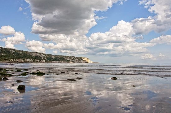 East Cliff and Warren Country Park: The Warren at low tide