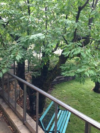 Rocky Mountain Inn: Just after the rain, the tree and park bench in front of my room.