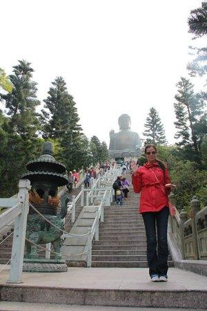 Grand Bouddha : Buddha