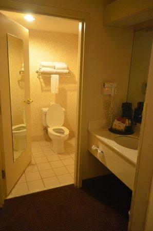 Ashmore Inn & Suites : il bagno