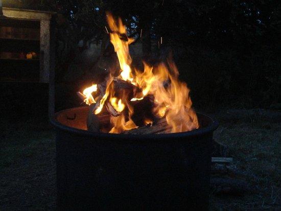 MacKerricher State Park: Cozy Fire