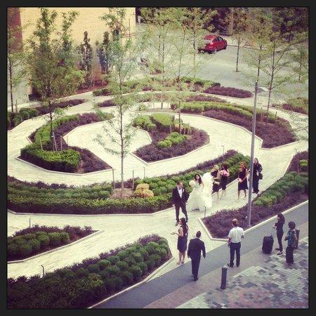 Four Seasons Hotel Toronto: View overlooking the rose garden. My bride & groom taking photos.