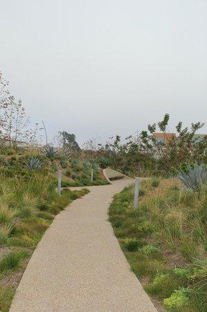 Path in Tongva Park