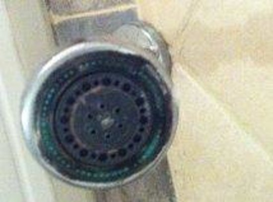 LUX* Grand Gaube: Limescale on shower head