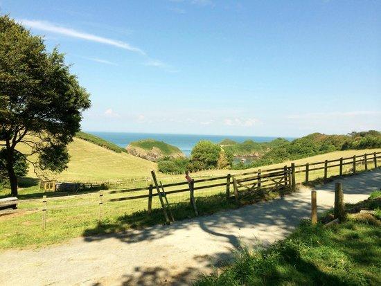Widmouth Farm Cottages: Widmouth Farm