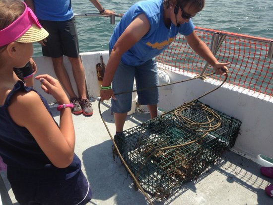OceanQuest: Elise pulling up the lobster trap