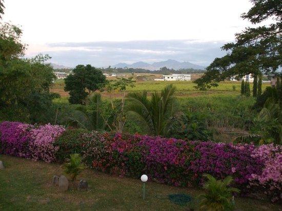 Fiji Gateway Hotel : Bougainvillea dominated view