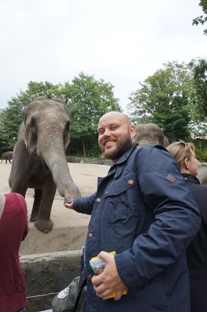 Tierpark Hagenbeck: я и слоник
