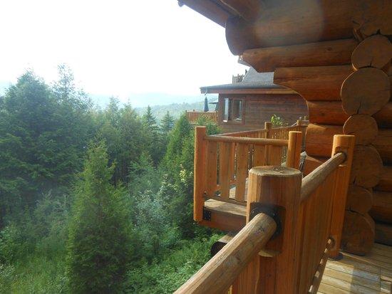 Hotel Sacacomie: balcon